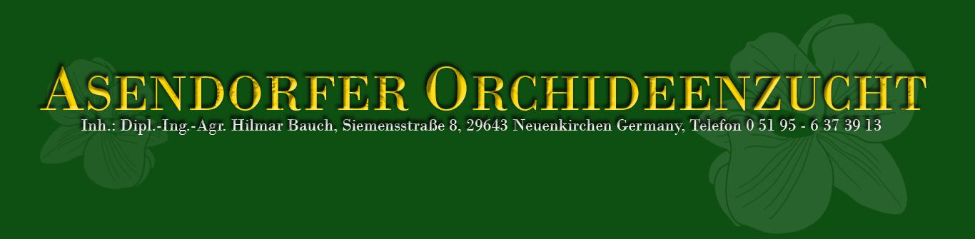 Asendorfer Orchideenzucht